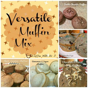 Versatile Muffin Mix - Plus 6 ways to make it into delicious muffins! Including double chocolate, blueberry, chocolate coconut & more!!