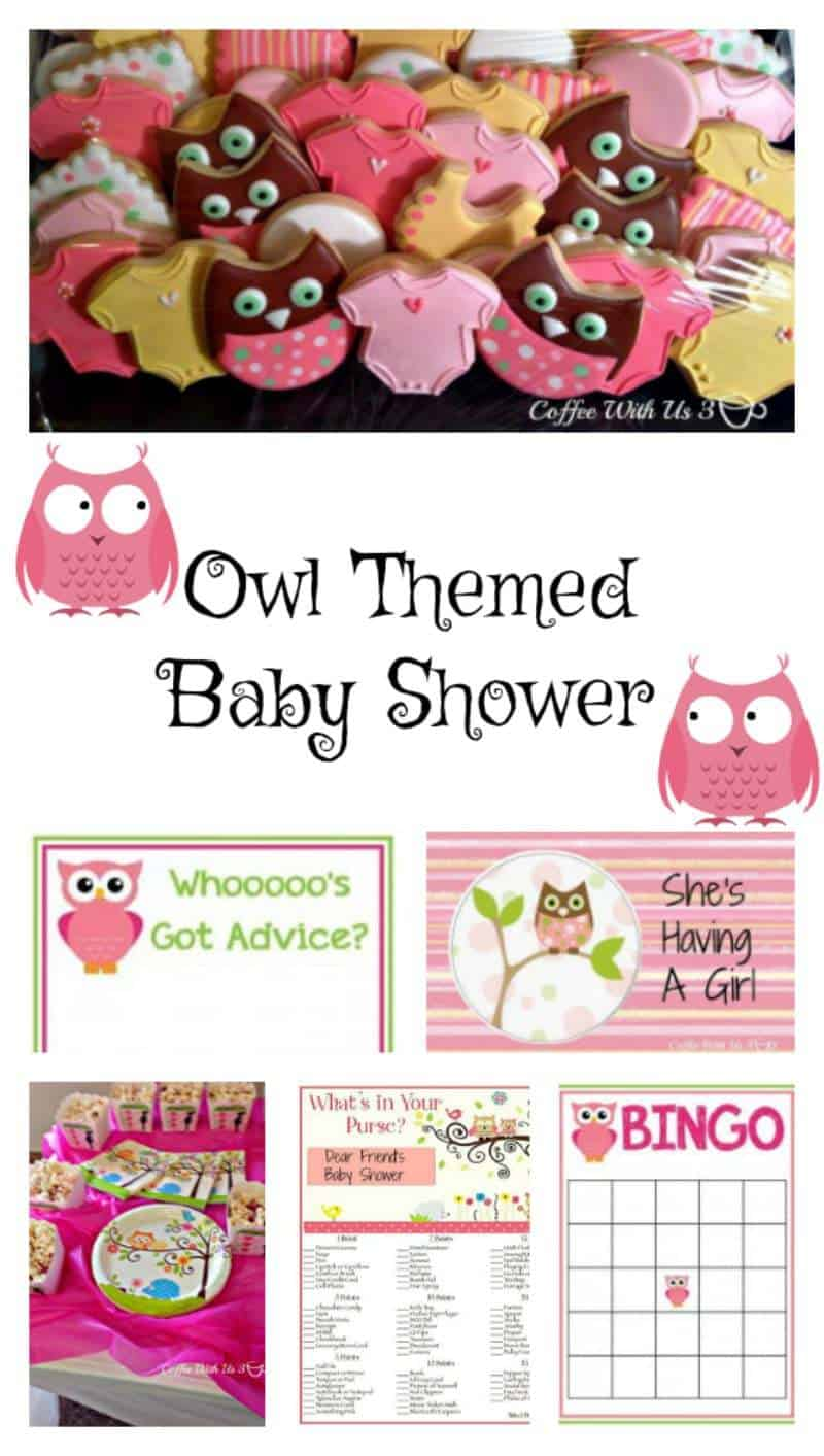 Ideas for an adorable Owl Themed Baby Shower for a girl!
