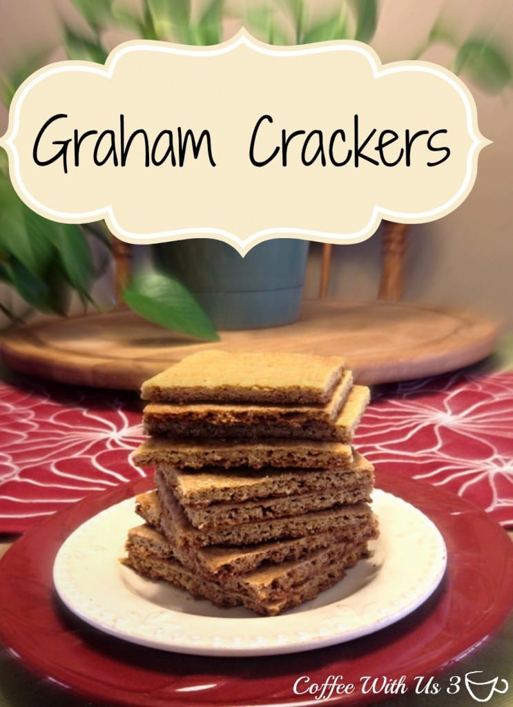 DIY Graham Crackers