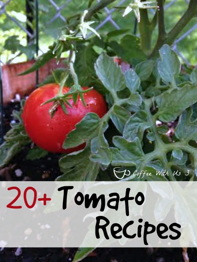 20+ Tomato Recipes - Awesome tomato recipes for summer produce