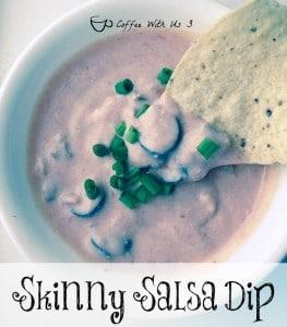 Skinny Salsa Dip - A yummy low fat dip made with Greek yogurt & salsa.
