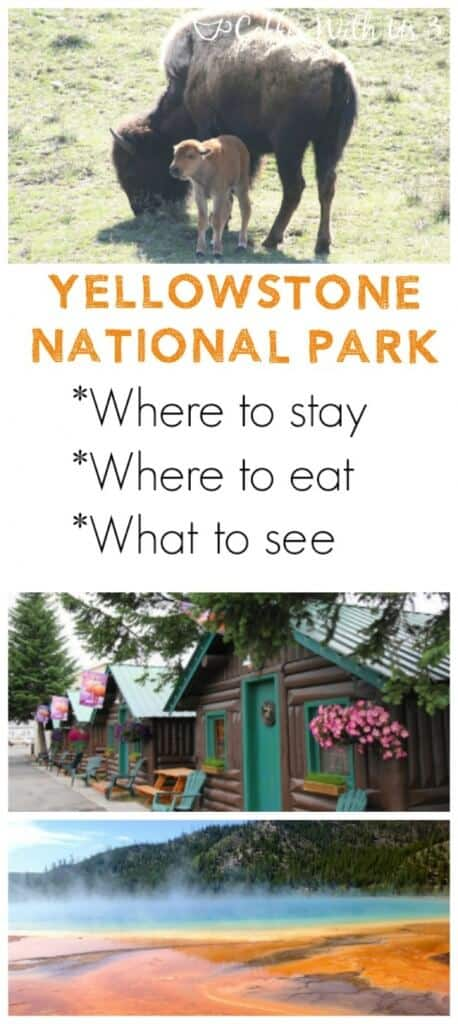 Yellowstone Vacation Guide | Includes where to stay, where to eat, and what to see! Please tips & tricks for locals who visit Yellowstone multiple times every year! Plan your Yellowstone National Park vacation easily!