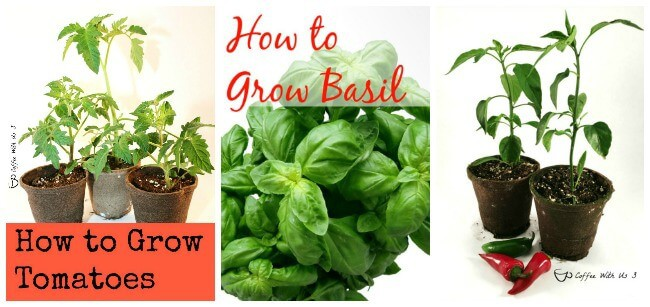 How to Grow 1
