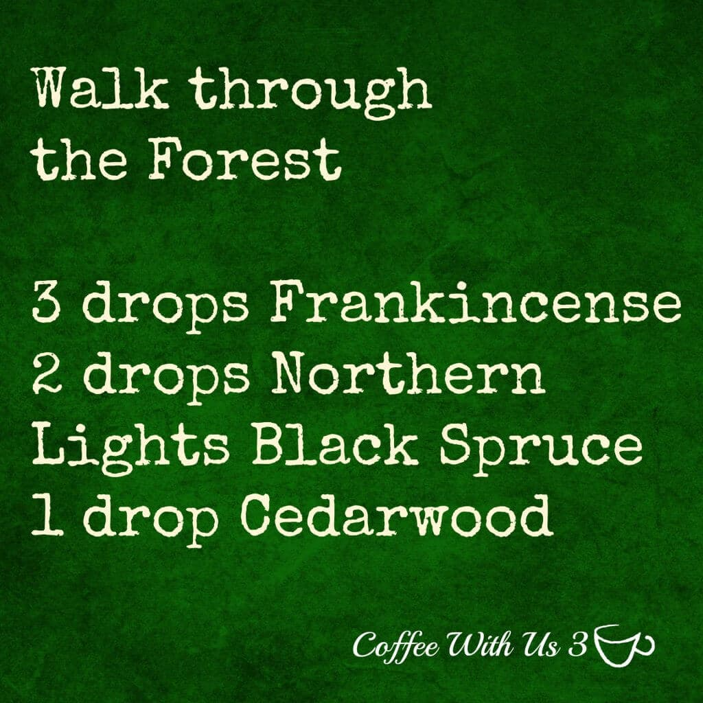 walk-through-the-forest