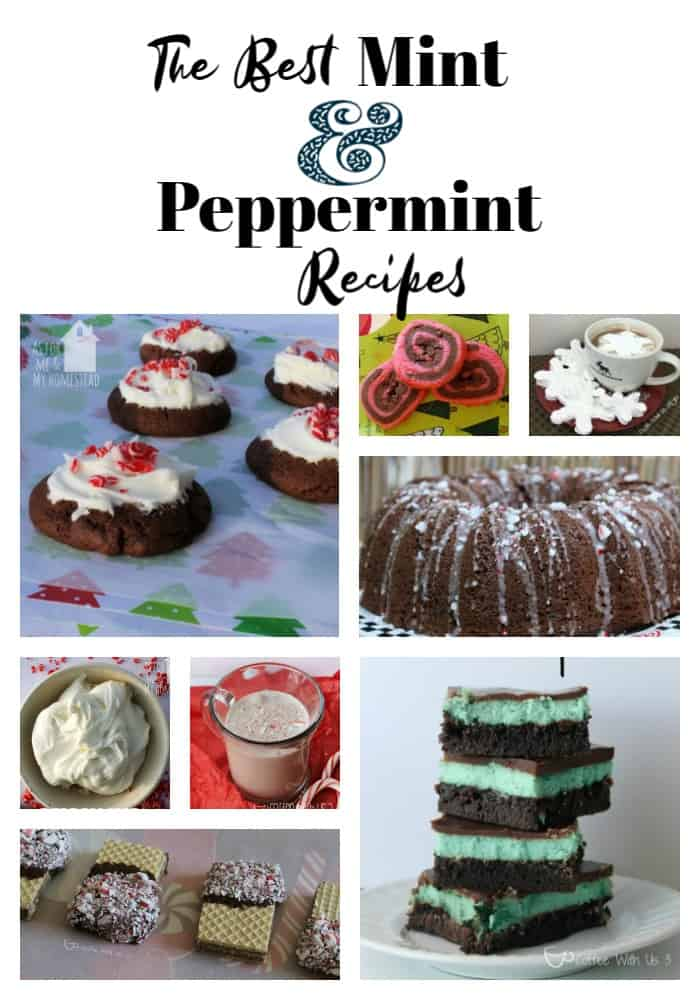 Collage of Mint & Peppermint Recipes